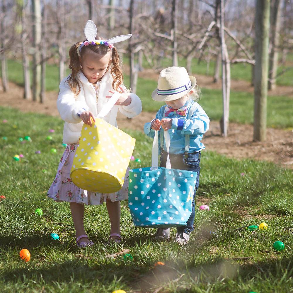 Easter Egg-Citement.jpg