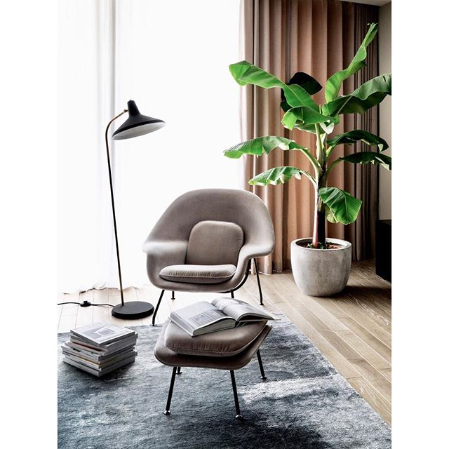 Dusty pink velvet Womb Chair by @knollinc in the open plan living room of our Westminster project @designandthat 📸 @leodavut and @alexdallison  #designandthat #livingroom #wombchair