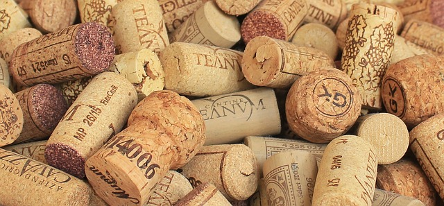 champagne-cork-1350404_640.jpg