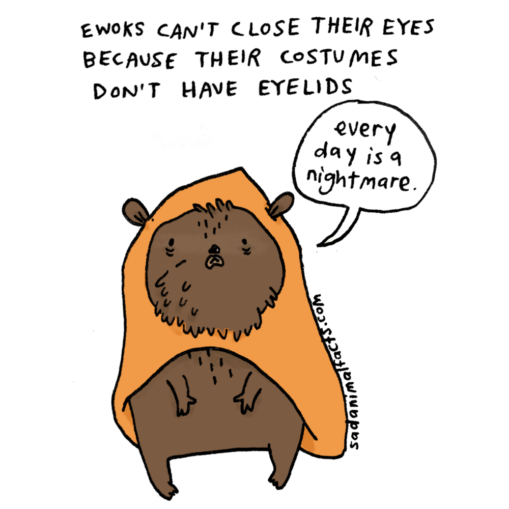 sad animal facts ewok