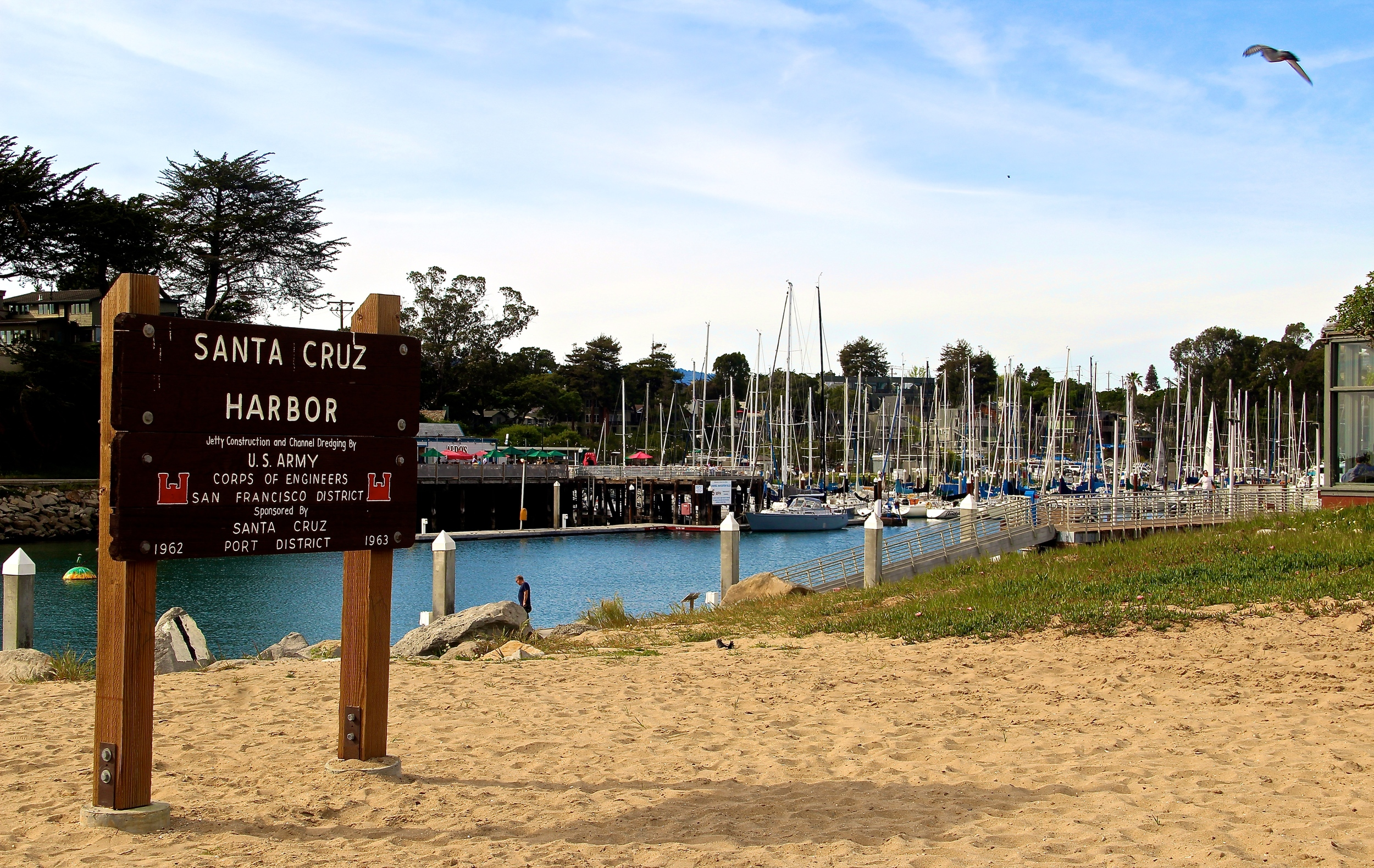 santa cruz harbor california