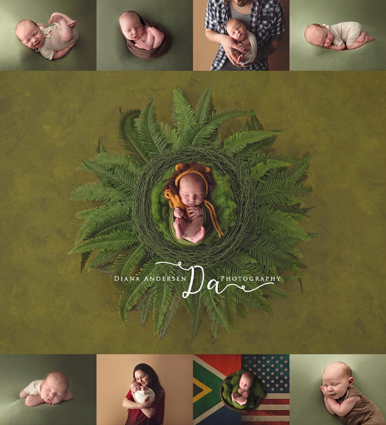 Safari baby worland wy newborn photographer