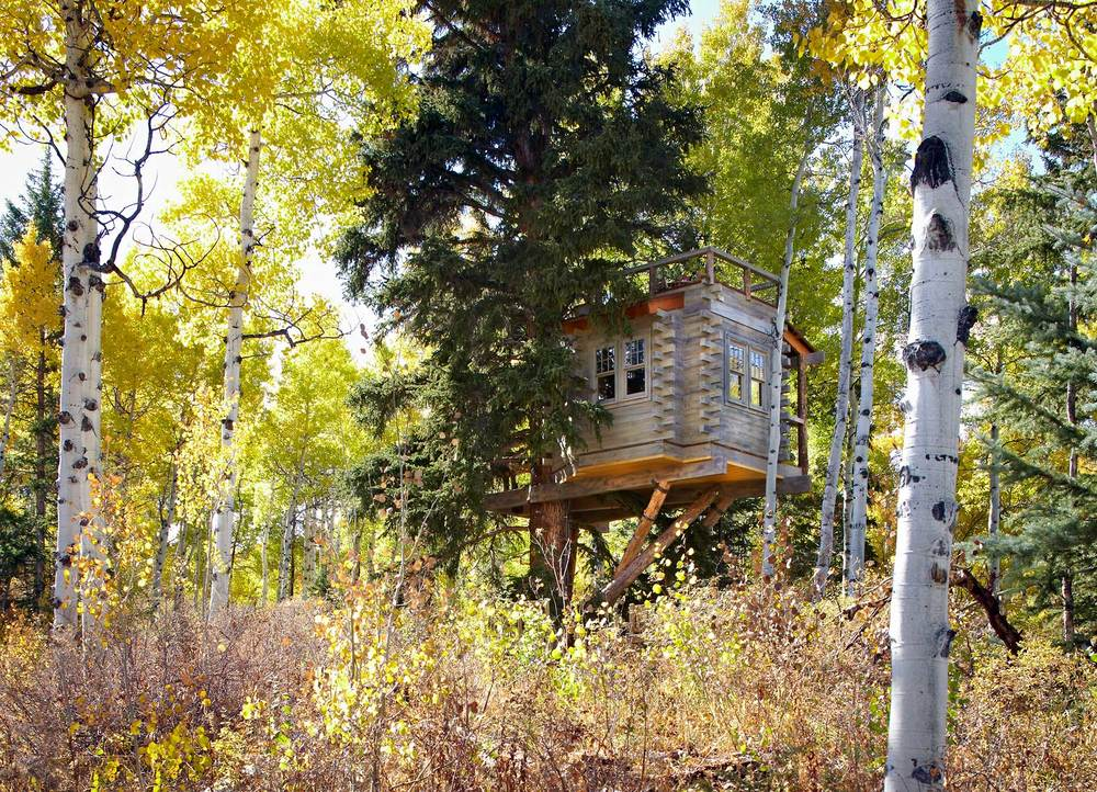 Missy-Brown-Edwards-Treehouse-Exterior-#4-Web copy.jpg