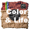 Color and Life