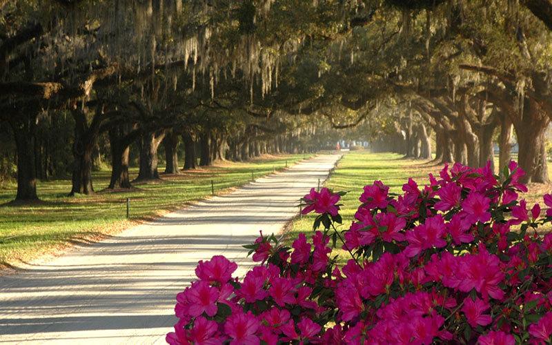 01.  World's Best City 2016 - Charleston, South Carolina, USA