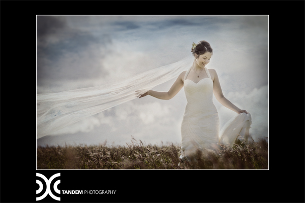 v - silk satin crepe, silk tulle - Christchurch bridal - Tandem Photography