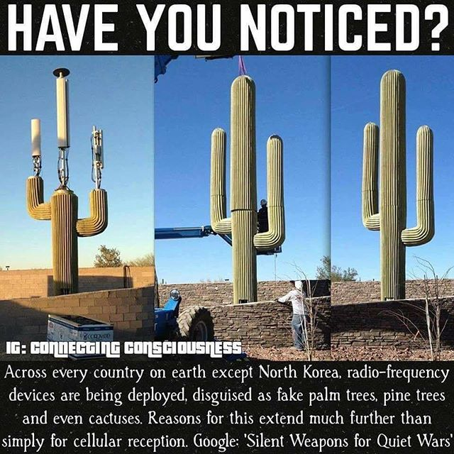 "Protect yourself from these shady ass ""trees."" Listen to my EMF and 5G radiation discussion now via link in my bio or on COSMICARCHERESS.COM 🚫🌵📡✊"