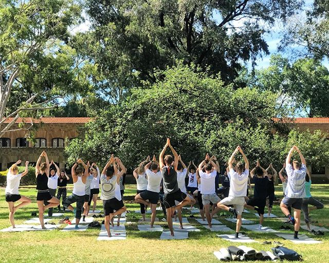 Tree pose today among the trees with an incredible bunch of first years about to start their uni journey! Thanks for having us Newman, you got this 🙌🏽🌟💚