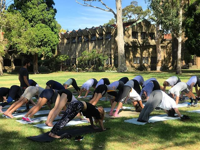 We are back at UniMelb next week to support University Mental Health and Wellbeing day! Join us on the mat on South Lawn from 12pm-1pm for some free Yoga & Chill 🤙🏽 #mentalhealth #studentwellbeing #uni #yoga #free #unimelb