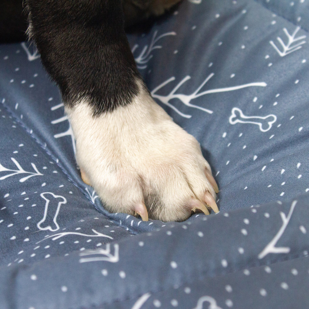 - SUPPORTIVE FOAM2 inches of supportive foam to withstand hours of snoozing.
