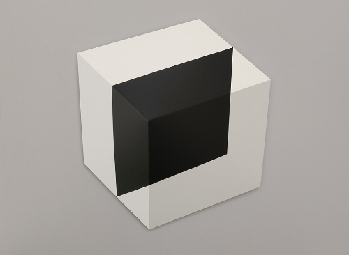 Black Square in Cube