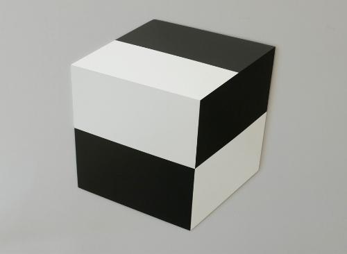 Black and White Blocks