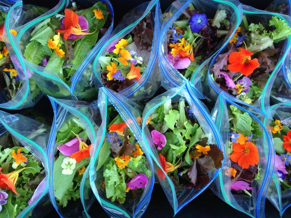 Our salad blend, which includes five different types of edible flowers!
