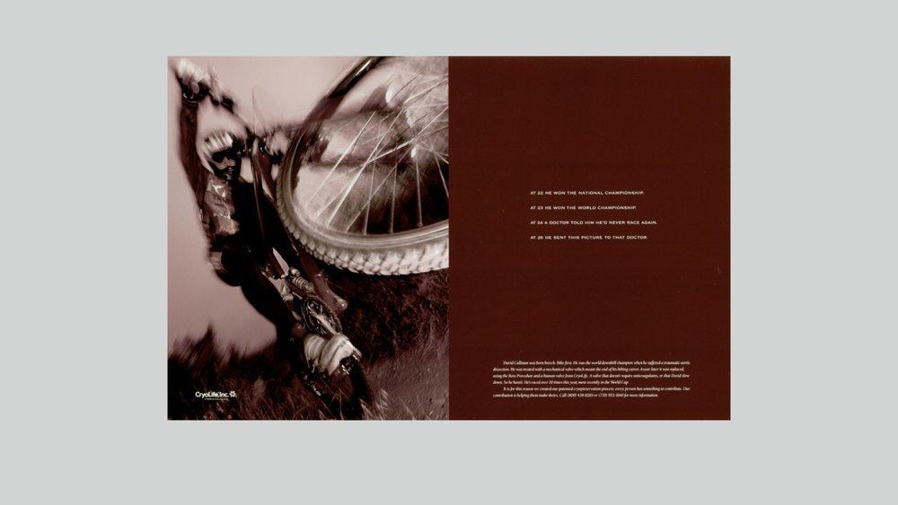 portfolio pages.034.jpeg