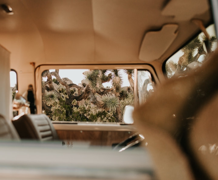 vw-bus-joshua tree