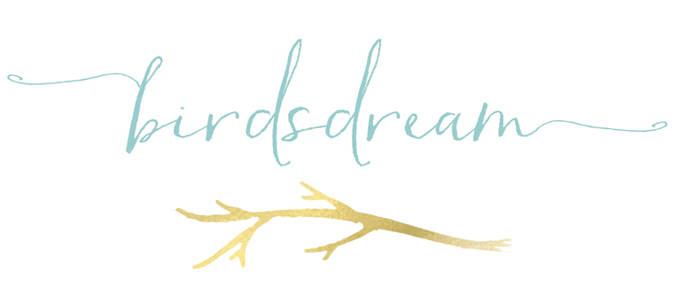 BirdsDream Design