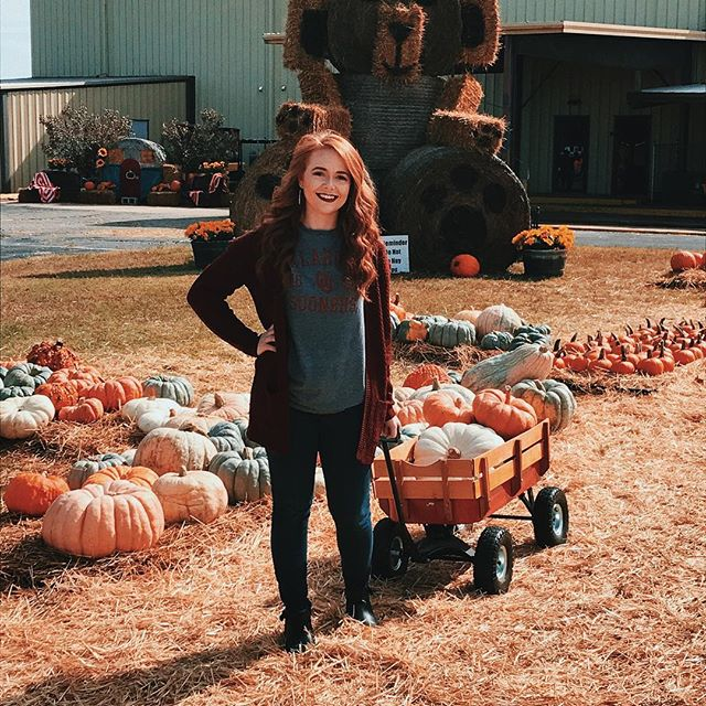 """I did Fall things yesterday🍁 anyone else love the """"ugly"""" pumpkins more than the regular ones?"""