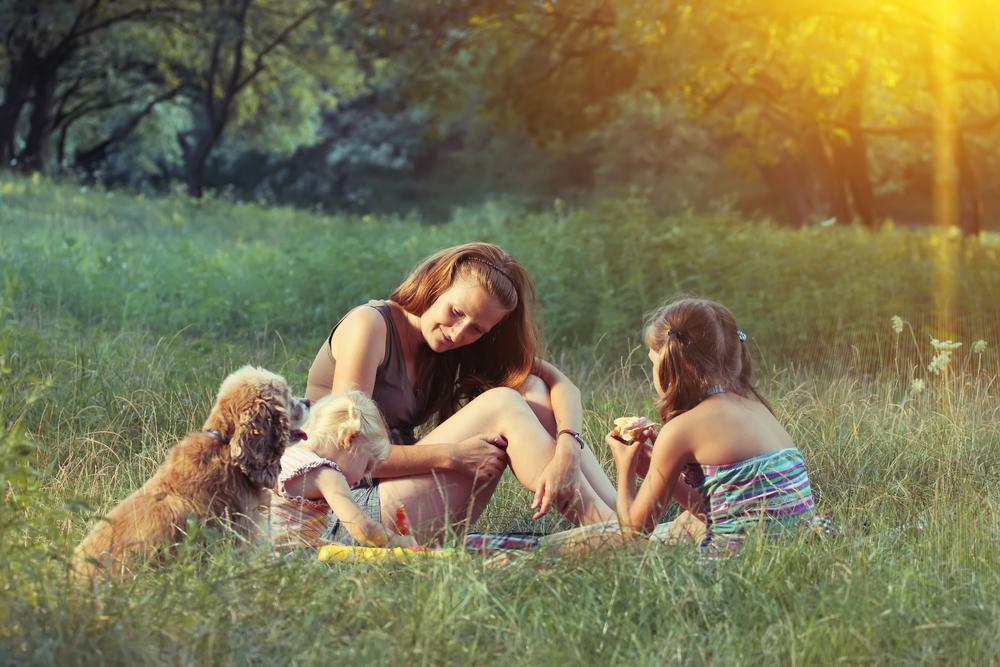 bigstock-Family-On-The-Picnic-104507447.jpg