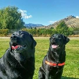 Kona & Fiona