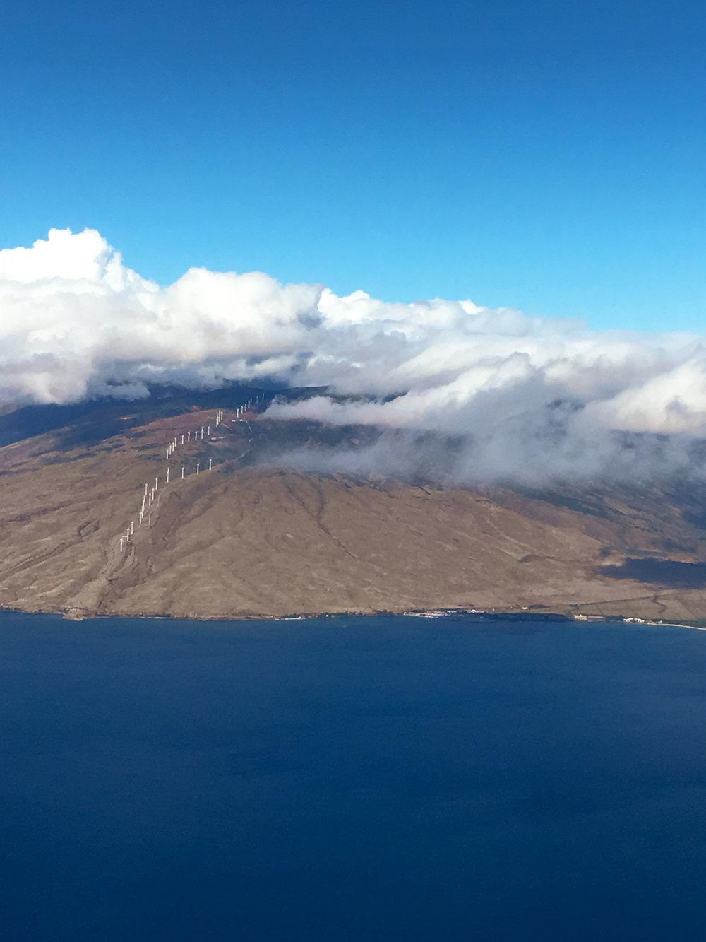 Maui-Trip-Kite-4.jpg
