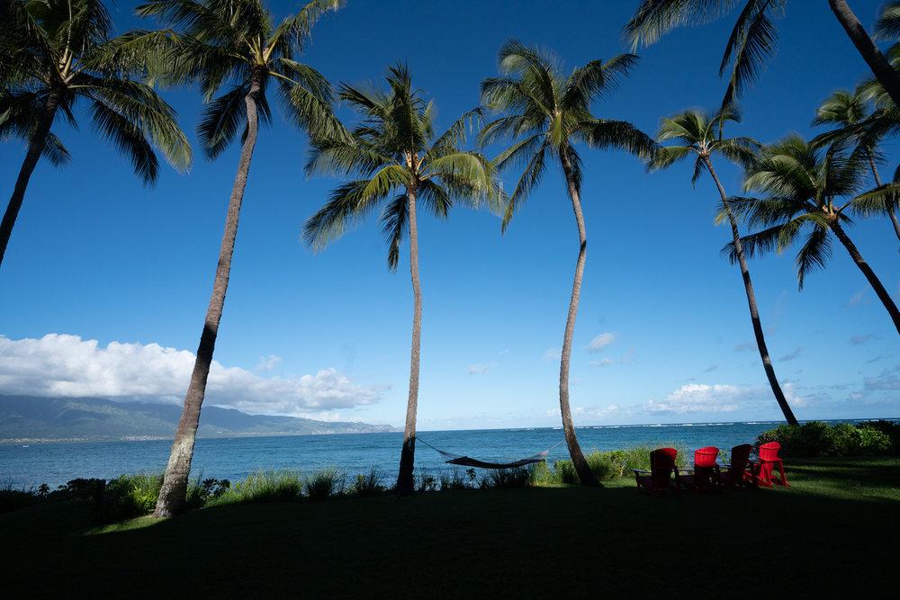 Maui-Trip-Kite-6.jpg