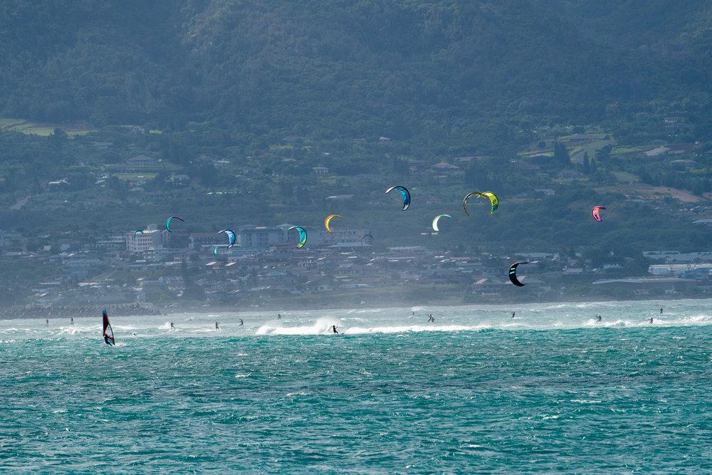 Maui-Trip-Kite-10.jpg