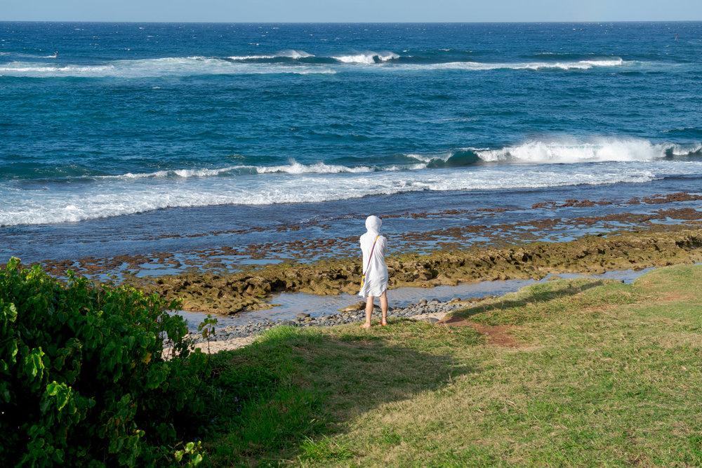 Maui-Trip-Kite-23.jpg