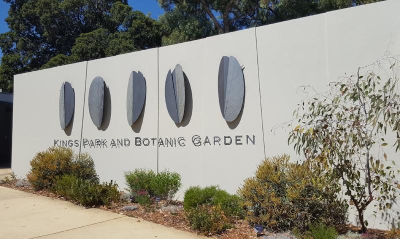 Kings Park Bontanic Gardens