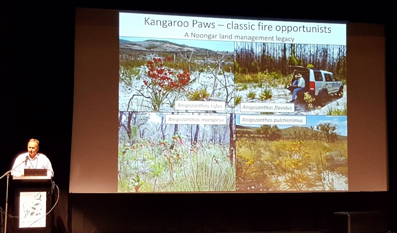 Dr. Stephen Hopper talking about his reserach on kangaroo paws.