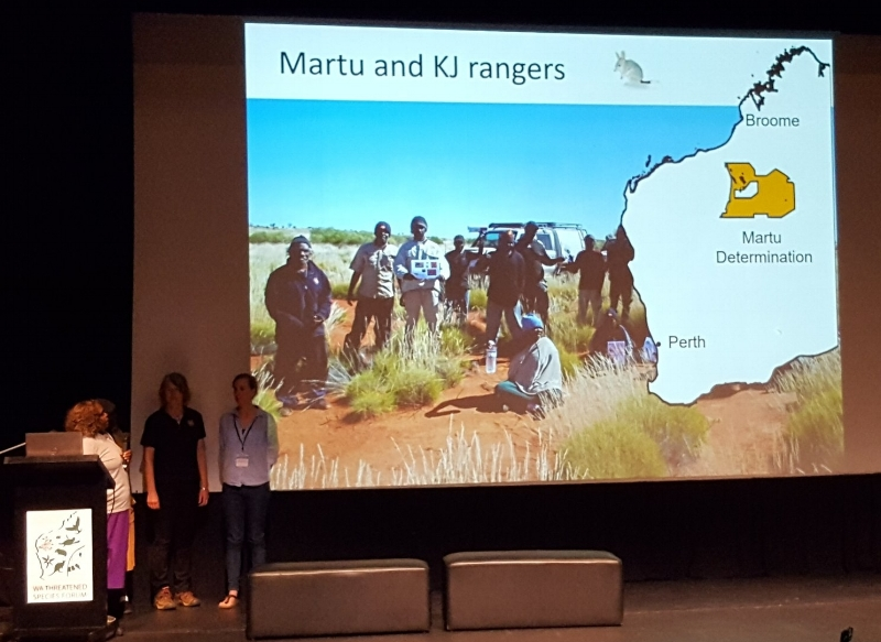 Martu land range in Western Australia