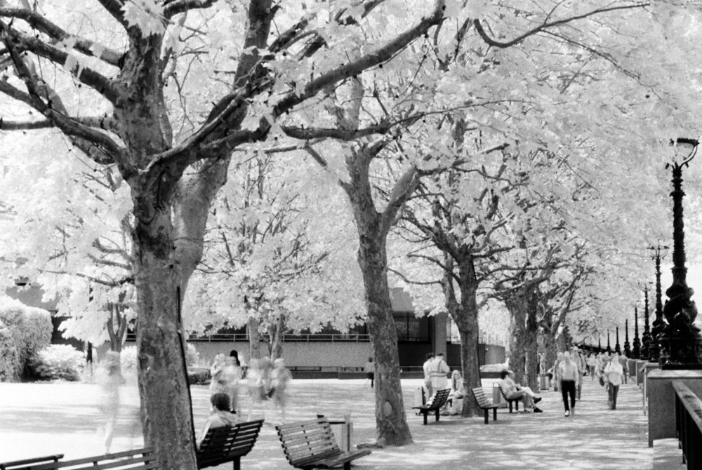 Sandeep Surmal,  Southbank, London,  Ilford SFX film with Infrared R72 filter.