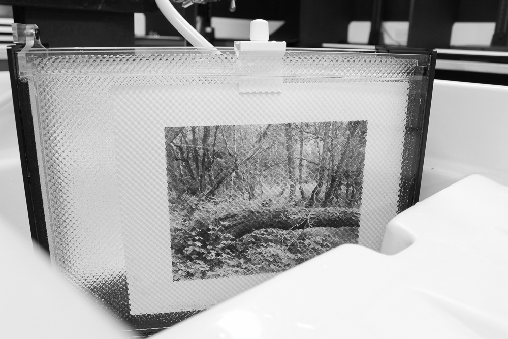 The joyous sight of a 10x8 contact print in the wash.
