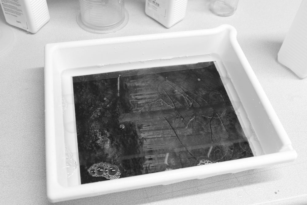 One of my 10x8 negatives receiving wetting agent.