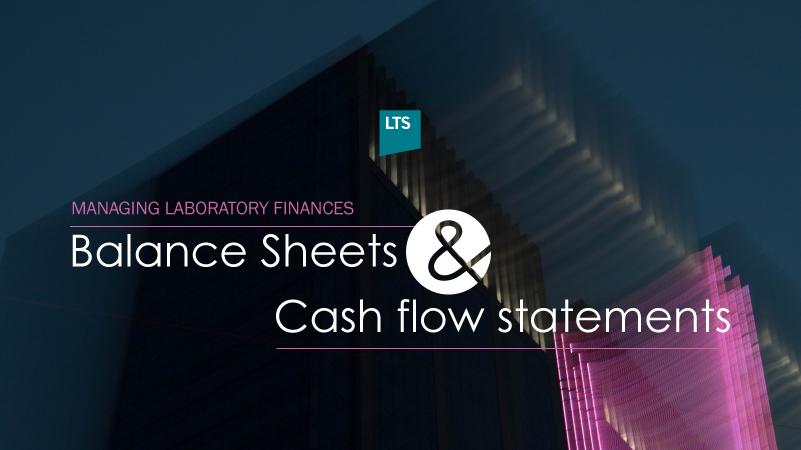 Balance-Sheets-and-Cash-flow-statements_L.jpg