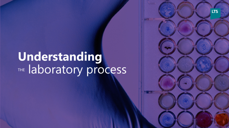 M6-Understanding-the-lab-process3.jpg
