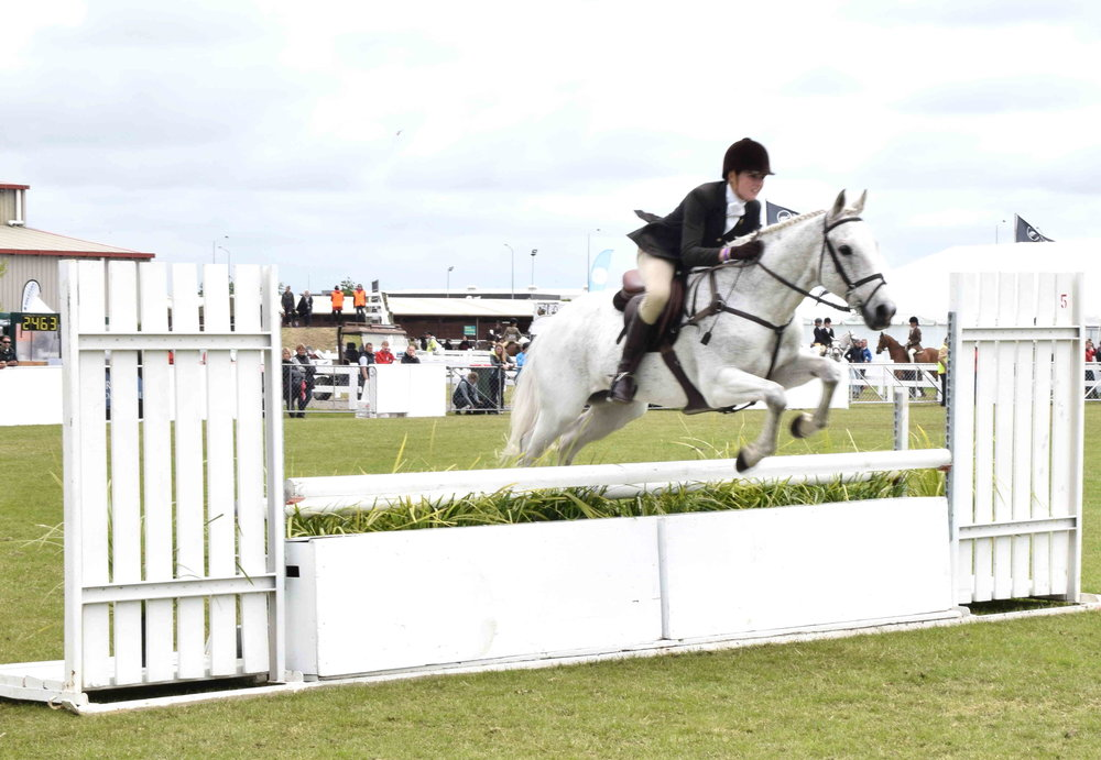 Showjumping - competitive riding of horses over a course of fences and obstacles, with riders and horses judged on their ability and time