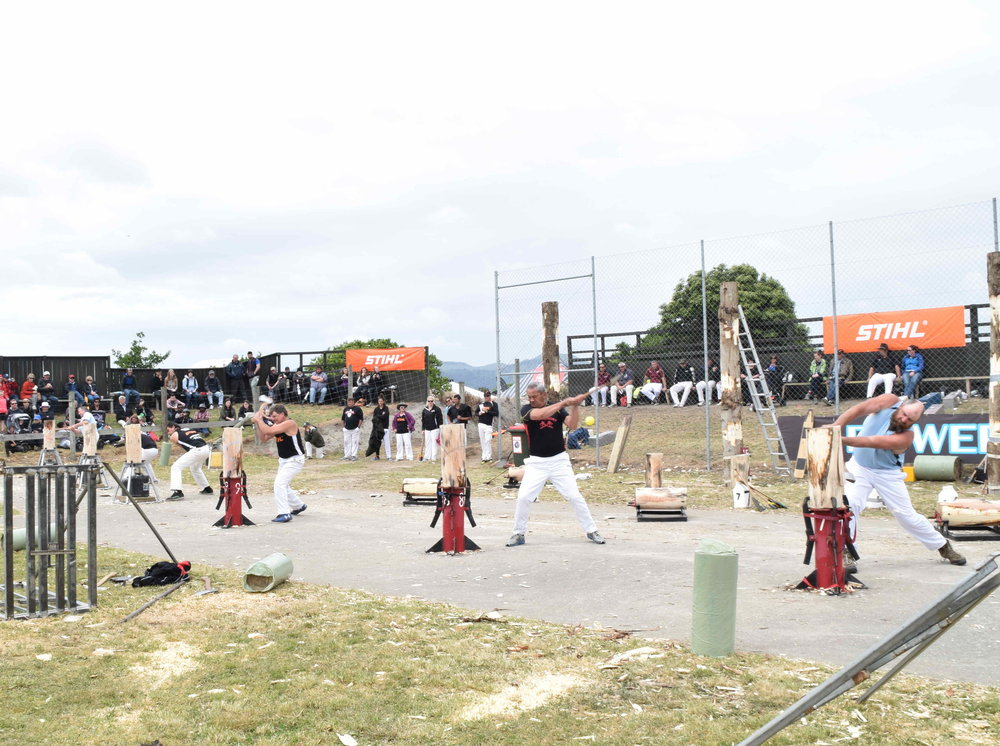 The most popular sport! International woodchopping competition with Australasia's best descending in Canterbury to demonstrate their skills