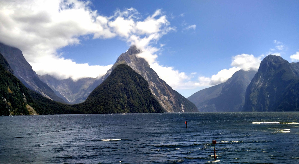 Milford Sound visitor numbers are expected to reach 600,000 this year by March. Try Doundtful Sound if crowds bother you.