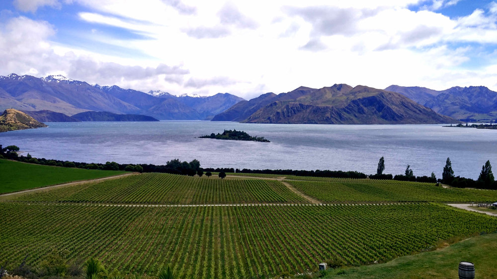 Lake Wanaka as seen from the Rippon Vineyard.
