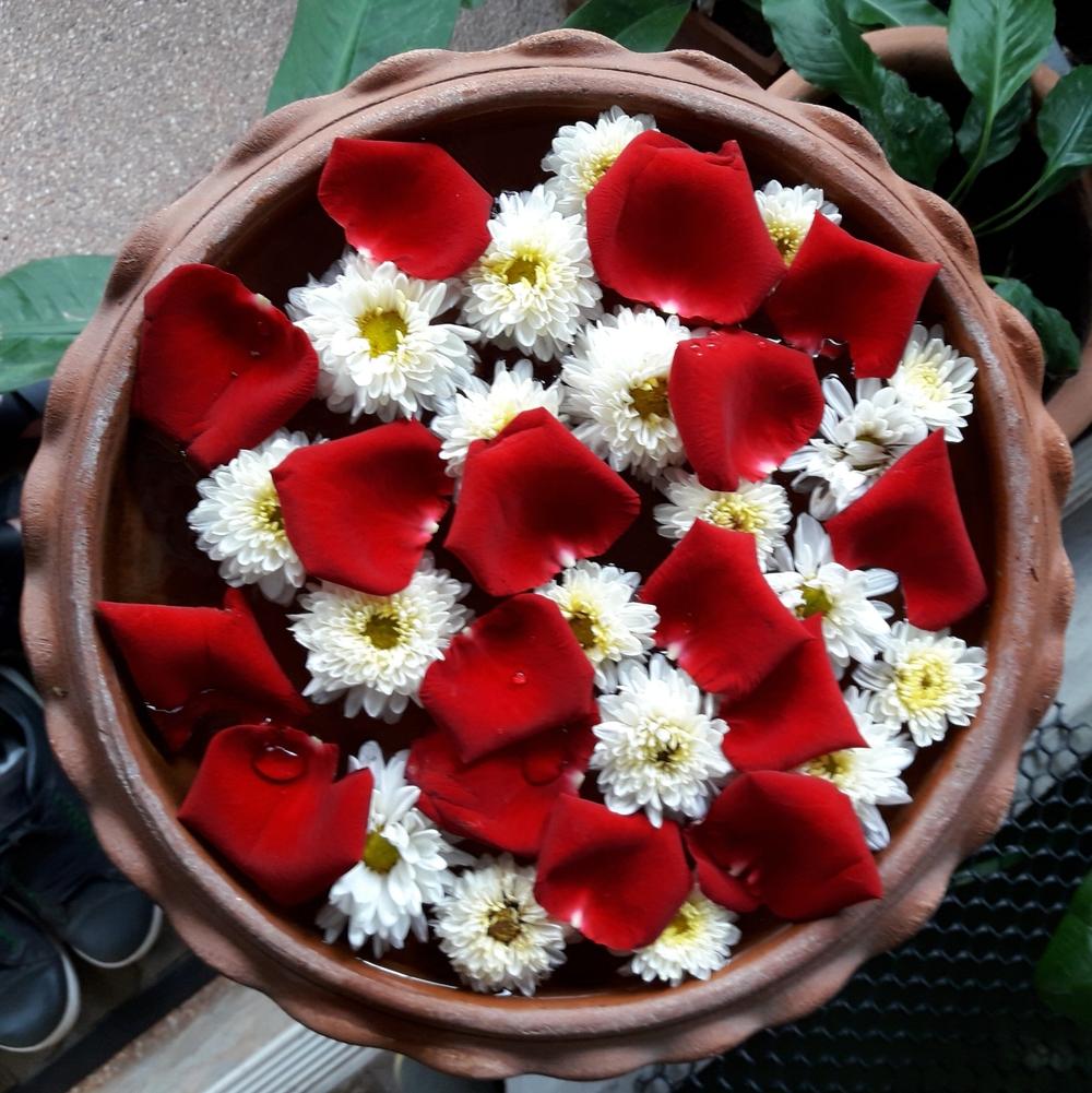 Rose water at Cloud 9 Spa Chiang Mai | Wanderlust Movement