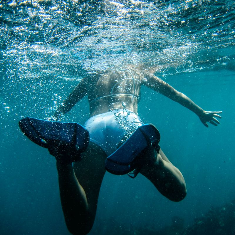 Ocean Safari in Mozambique | Wanderlust Movement