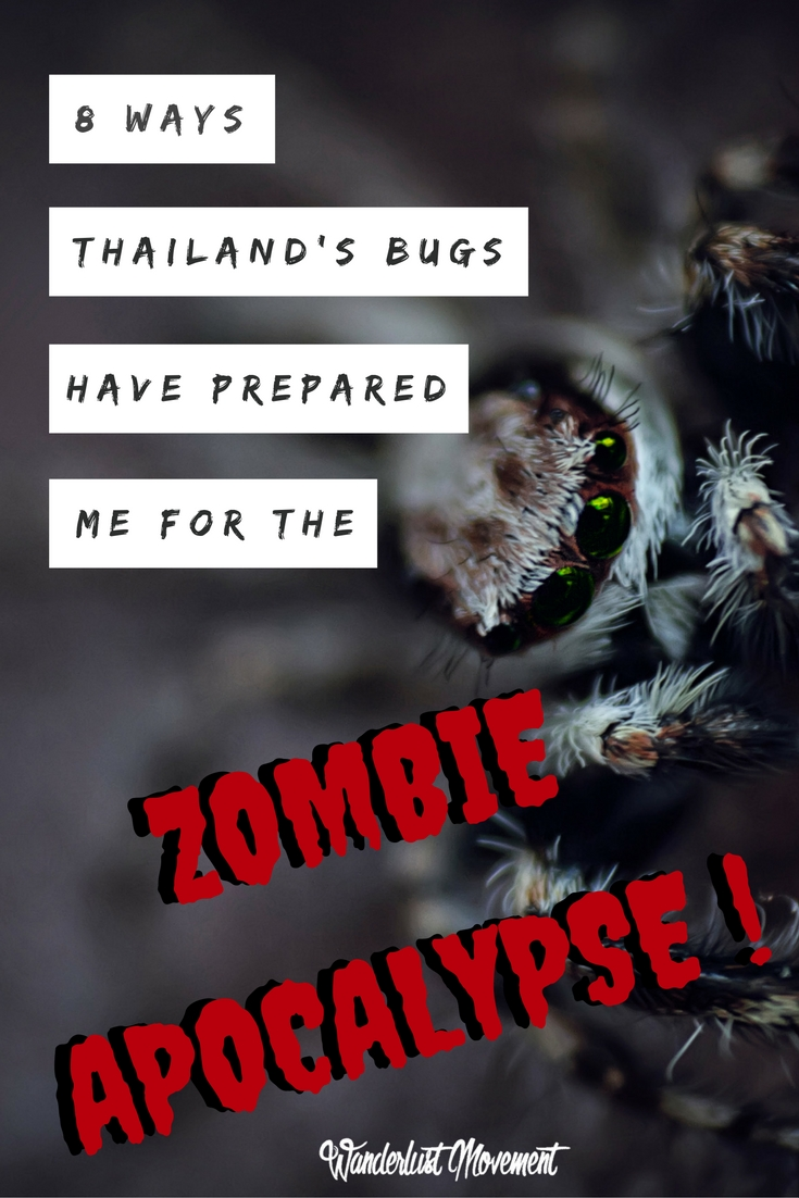 8 Ways Thailand's Bugs Have Taught Me For The Zombie Apocalypse | Wanderlust Movement
