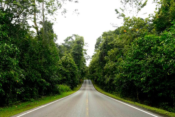 The road to the Vistor's Center inside Khao Yai National Park | Wanderlust Movement