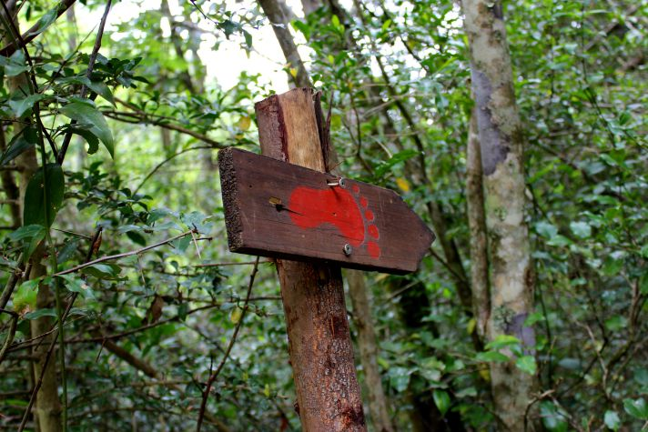 Red trail hiking route | Wanderlust Movement