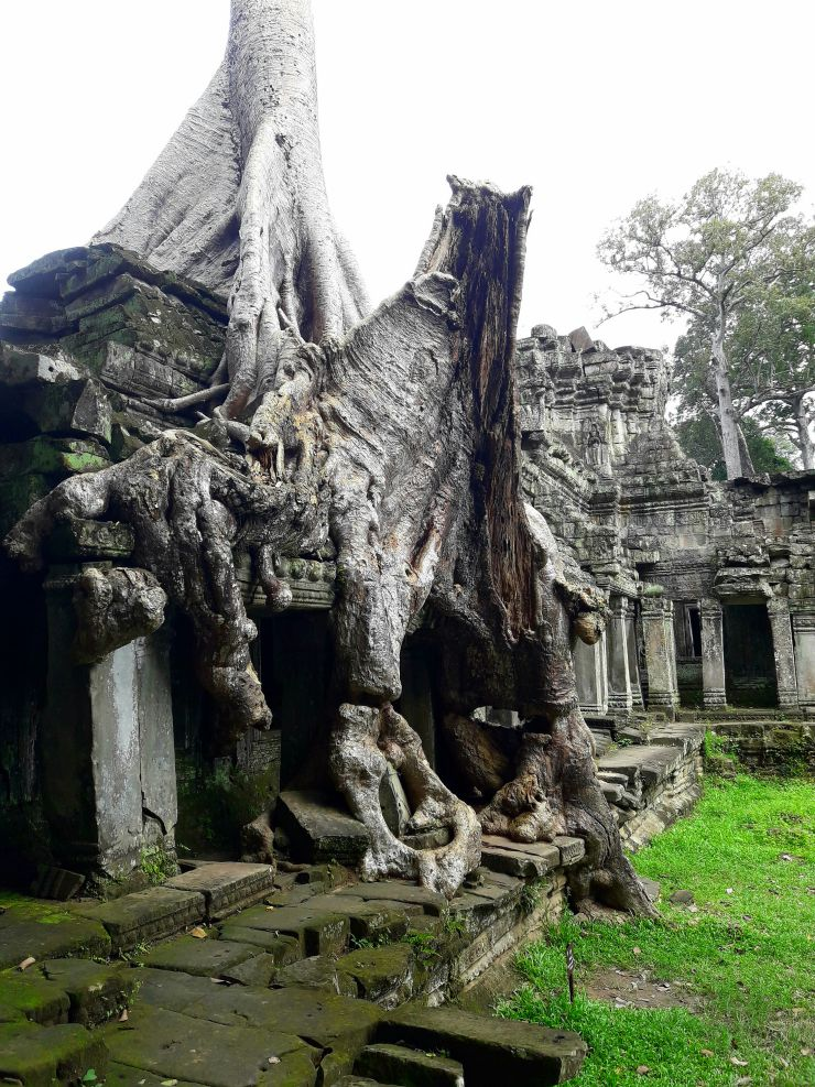 Angkor Wat | Wanderlust Movement
