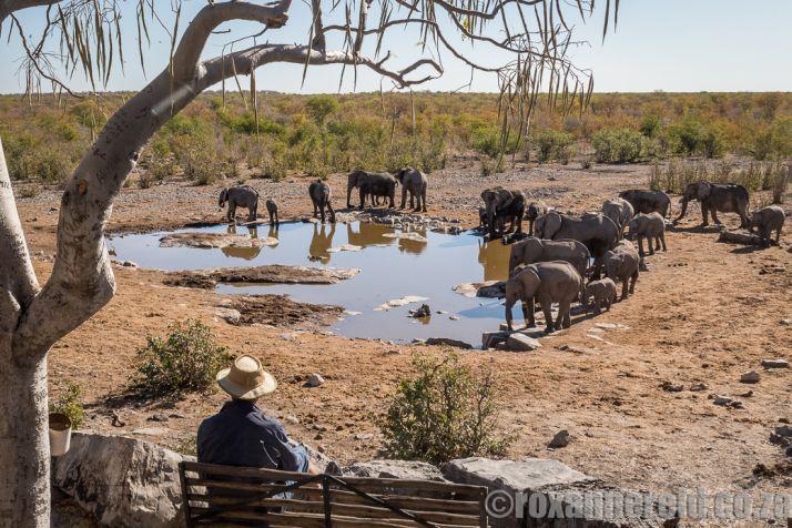 Namibia   Wanderlust Movement