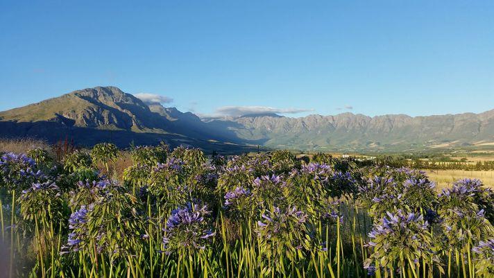 South Africa   Wanderlust Movement