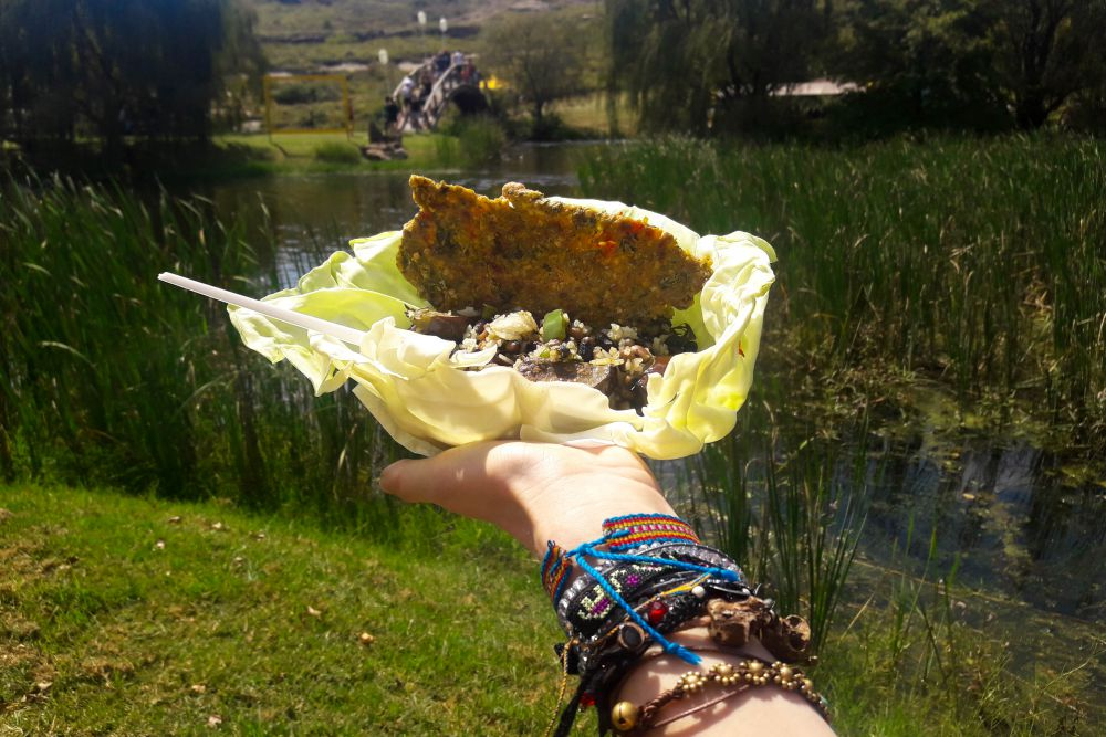Vegetarian and Vegan food at Mieliepop | Wanderlust Movement