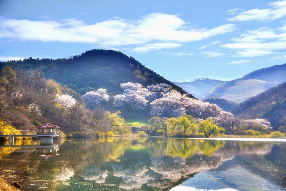 South Korea   Wanderlust Movement