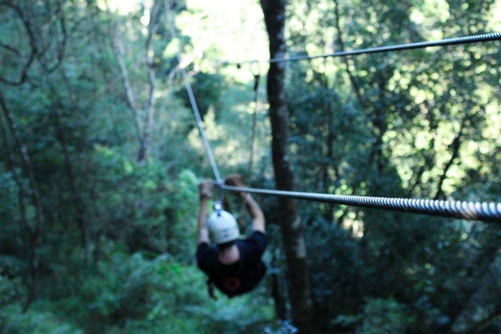 Flying through the Blue Grotto Forest | Wanderlust Movement